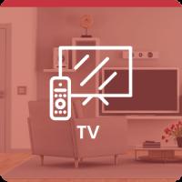 TV CAT-min